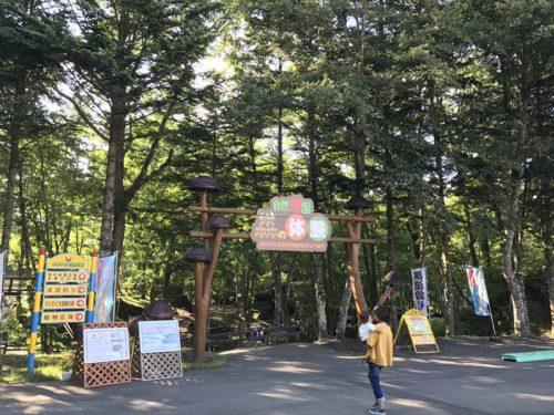 ワクワク大冒険の森