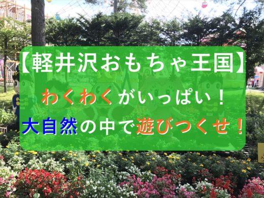 【完全ガイド】軽井沢おもちゃ王国の魅力を写真いっぱいに超まとめ!